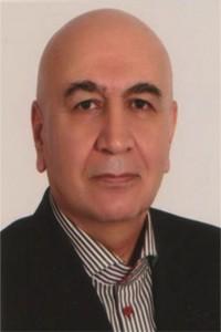 مدیر عامل شرکت Iran Software & Hardware Co
