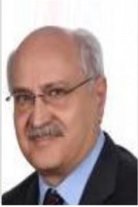 مدیر عامل شرکت Tehran Energy Consultants Co.